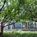 狛江の家・S邸の写真 外観8