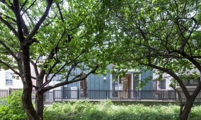 狛江の家・S邸 (外観8)