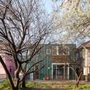 狛江の家・S邸の写真 外観10