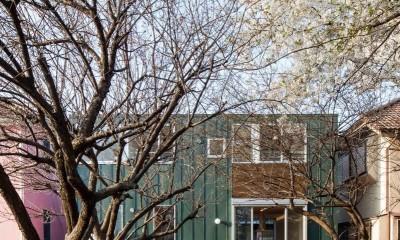 狛江の家・S邸 (外観10)