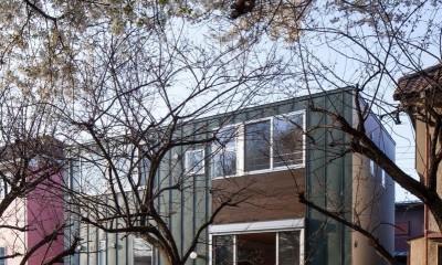 狛江の家・S邸 (外観11)