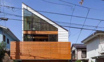 桜台の家 (外観6)