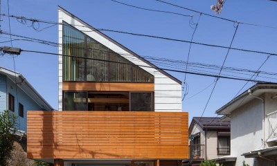 桜台の家 (外観7)