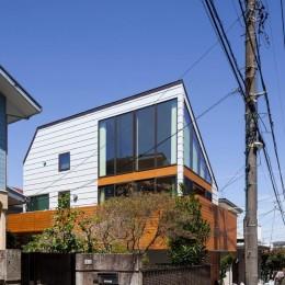 桜台の家 (外観12)