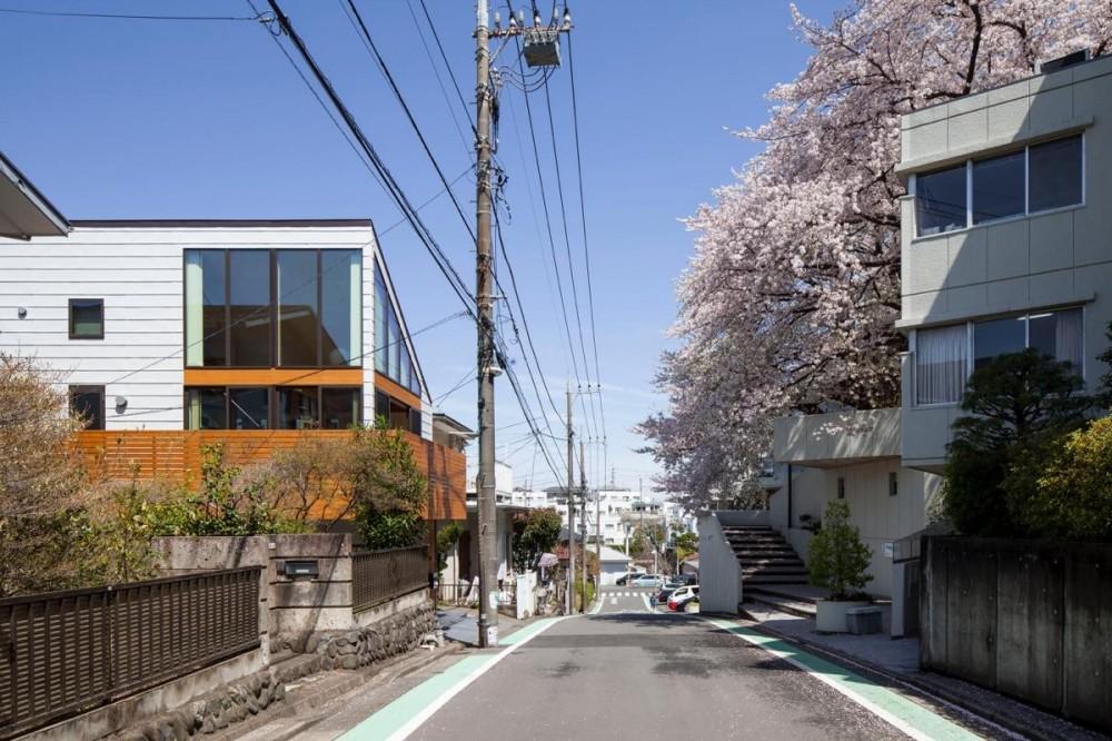 桜台の家 (外観14)