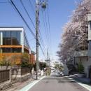 桜台の家の写真 外観14