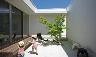 平尾の家-hirao (中庭)