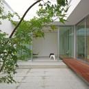 平尾の家-hiraoの写真 中庭2