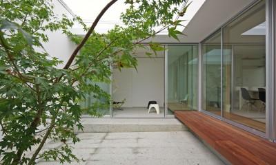 平尾の家-hirao (中庭2)