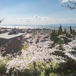 『青海の家』 風景と住む。~伊勢湾を臨む~ (城山公園から臨む青海の家と伊勢湾・春には桜が満開)