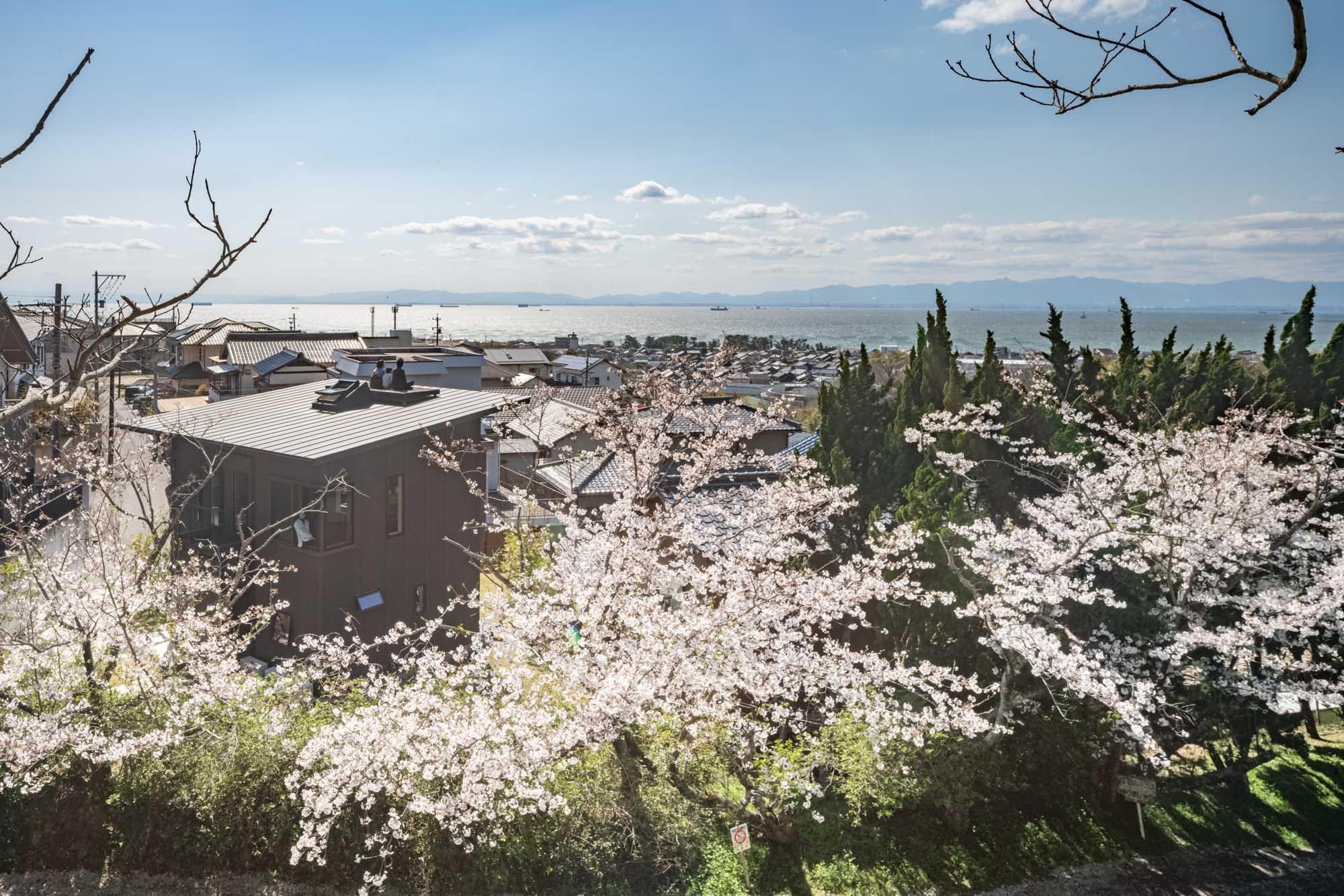 外観事例:城山公園から臨む青海の家と伊勢湾・春には桜が満開(『青海の家』 風景と住む。~伊勢湾を臨む~)