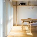 HYGGRE-駅近マンションで猫とルンバとスマートな毎日をの写真 リビング