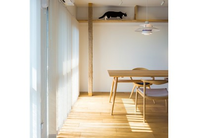 HYGGRE-駅近マンションで猫とルンバとスマートな毎日を (リビング)