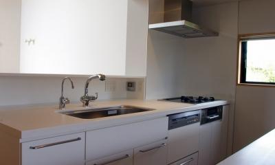 あざみ野南の住宅 / 一体空間の中に様々な居場所を設ける (キッチン)