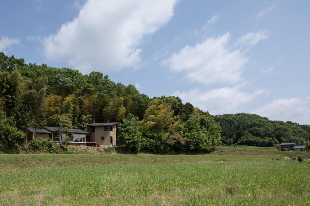 竹林の家/里山と竹林に囲まれながら田園風景を見渡す大らかな住まい (田園風景に溶け込む落ち着いた外観)