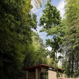 竹林の家/里山と竹林に囲まれながら田園風景を見渡す大らかな住まい (竹林の間を抜けていくアプローチ)