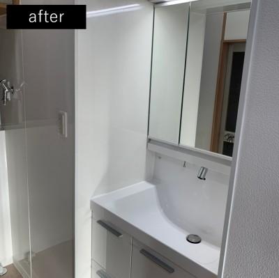 拡張した部分に洗面所を (洗濯機置き場を作れない、コンパクトな脱衣室に洗濯機を置こう!)