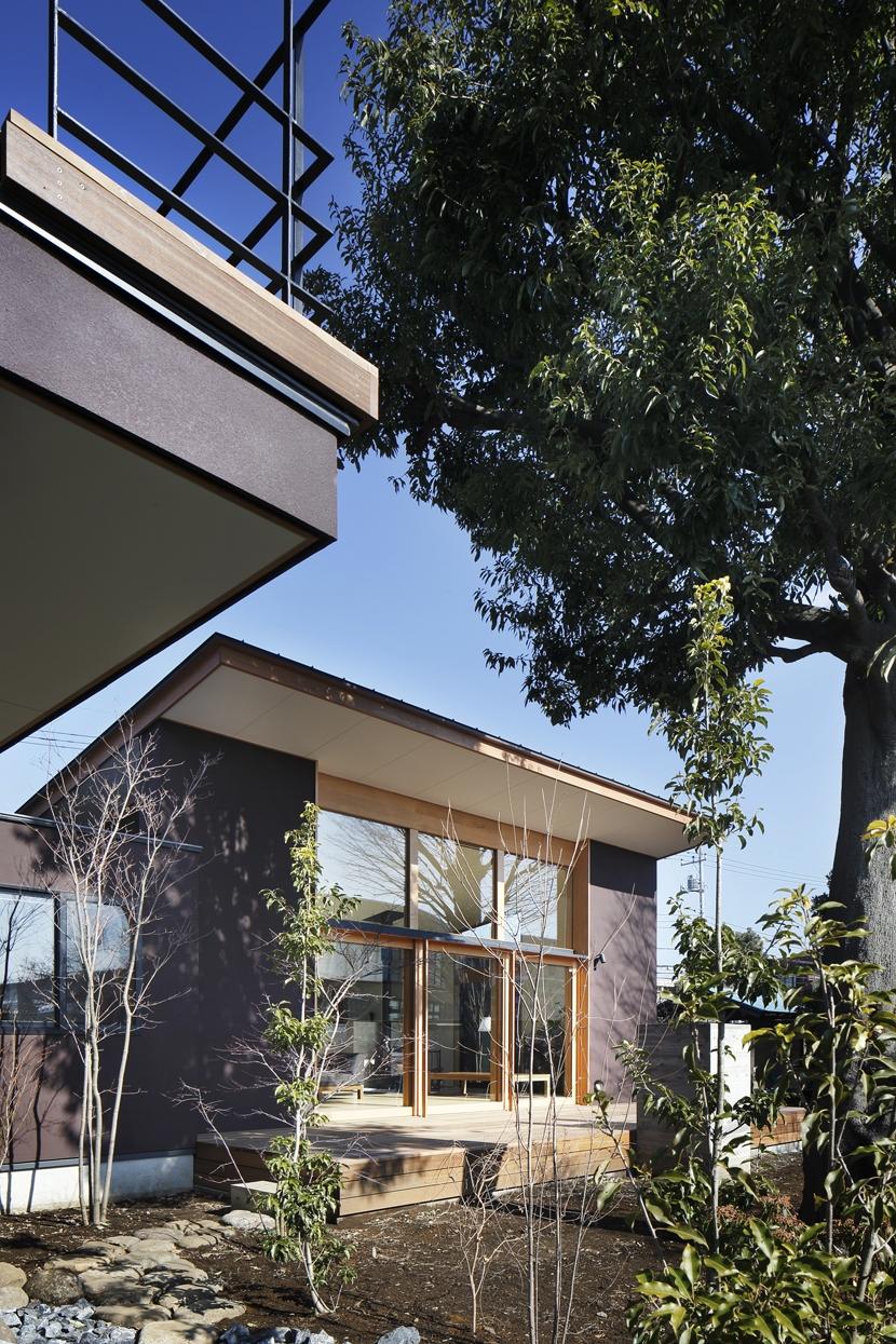 練馬の住宅 / 様々な場所とお互いの距離感を楽しむ住まいの部屋 外観