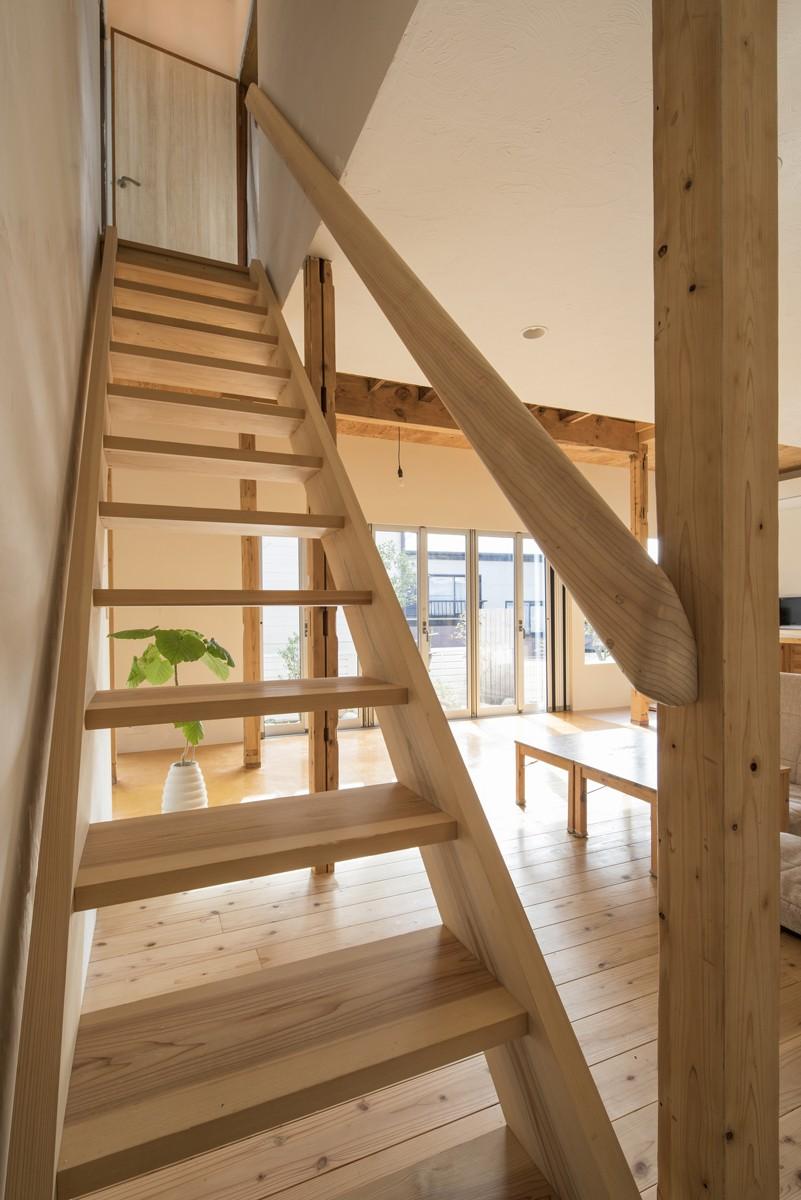 リビングダイニング事例:吉野杉の階段と杉削り出しの階段(鎌倉の家〜祖父母の家を引き継ぐ木造戸建てリノベーション〜)