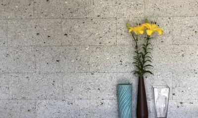 2階建てから平屋へ 大きく減築した戸建てリノベーション 【FLAT HOUSE】 (アクセント(大谷石))