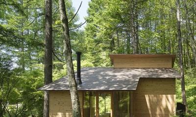 森の小屋/とっておきの時間を過ごすための小さな居場所 (東側外観)
