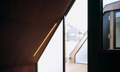東北沢の住宅 / リビングに木の箱が浮遊する (寝室、テラス)