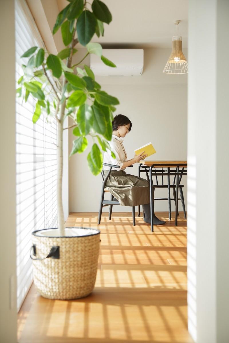 上質な質感に包まれた光と風・風景を楽しむ家 (ダイニング)