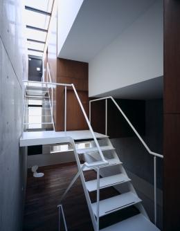 東北沢の住宅 / リビングに木の箱が浮遊する (トップライト、吹き抜け、階段、リビング)