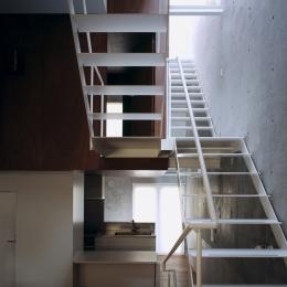 東北沢の住宅 / リビングに木の箱が浮遊する (ダイニングキッチン、吹き抜け、階段)