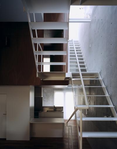 ダイニングキッチン、吹き抜け、階段 (東北沢の住宅 / リビングに木の箱が浮遊する)