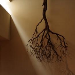 竹の山の家 (トップライトからの光)