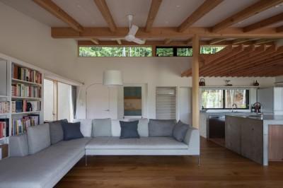 竹林の家/里山と竹林に囲まれながら田園風景を見渡す大らかな住まい (高窓を通して景色や光、風を取り込むリビング)