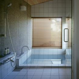 VILLA BOOMERANG / 八ヶ岳の別荘 (バスルーム)