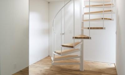 本駒込の家 (螺旋階段上から光の差し込む玄関ホール)
