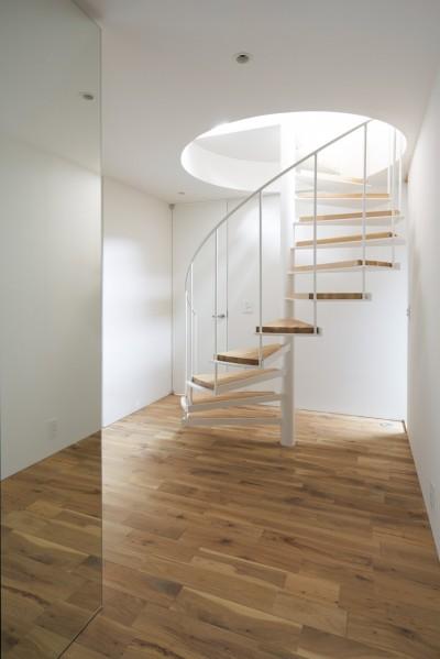 螺旋階段上から光の差し込む玄関ホール (本駒込の家)
