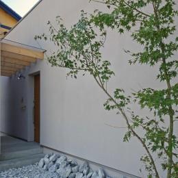 宮元の家-miyamoto