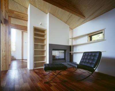 ライブラリー兼ゲストルーム、暖炉 (VILLA BOOMERANG / 八ヶ岳の別荘)