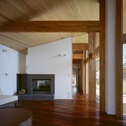 VILLA BOOMERANG / 八ヶ岳の別荘 (リビング、暖炉、テラス)