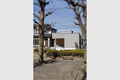 外観 (松戸の家4(FLAT HOUSE))