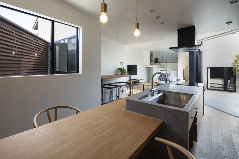 松戸の家4(FLAT HOUSE) (ダイニングキッチン)