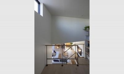 松戸の家4(FLAT HOUSE) (スキップフロア)