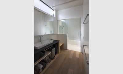 松戸の家4(FLAT HOUSE) (洗面所)