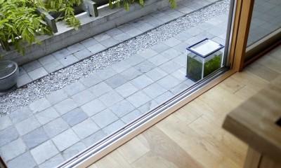 北鎌倉の家~伝統美と遊び心が融合する家 (藤棚とテラス)