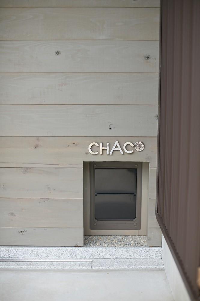 大草の家~猫と暮らすやさしいデザインの家 (猫の玄関)