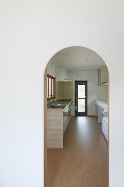 大草の家~猫と暮らすやさしいデザインの家 (キッチン)