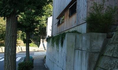 紅花居~百日紅と桜並木に囲まれた木箱の家 (外観)