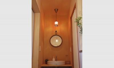 洗面所|松戸の家3(ゲルのある家)