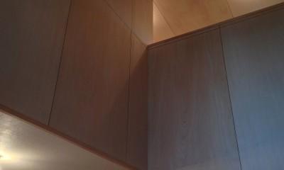 松戸の家3(ゲルのある家) (吹き抜け)