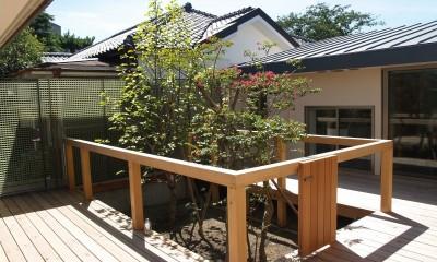 茅ケ崎東海岸北の家~中庭で緩やかにつながる2世帯住宅 (中庭)