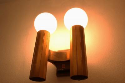 照明 (松戸の家2(無垢な賃貸))